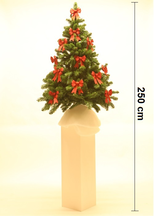 kerstboom op pilaar sokkel